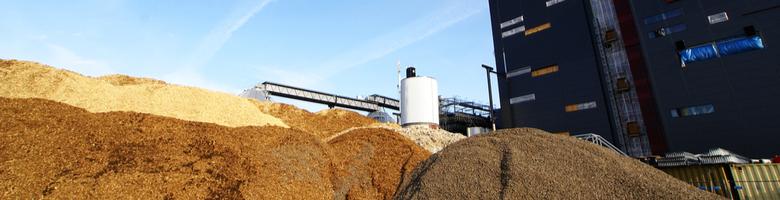 Biomassa beter voor klimaat dan aardgas