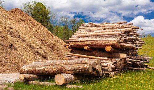 Biomassa geen hernieuwbare bron meer